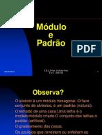 modulopadrao