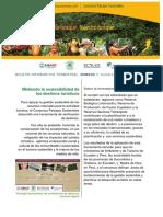 15.Midiendo la sostenibilidad de los destinos turísticos.pdf