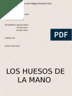 6_HUESOS DE LA MANO