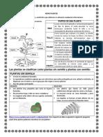 DOCUMENTO DE TERCERO PARTES DE UNA PLANTA (1)
