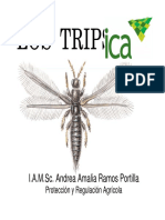 BIOLOGIA_TRIPS