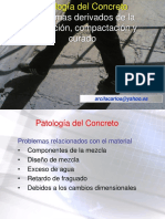 Patología del Concreto Colocación.pdf