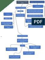 MAPA CONCEPTUAL fase 2.docx