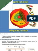 Bioquímica Celular I