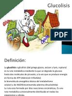 glucolisismodificada-161121070307.pdf