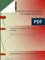 bioenergetica-160210233256.pdf