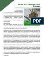 Manejo de la Fertirrigacion en Arandano