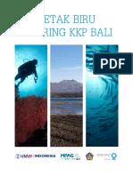27060_blue print bali mpa network.pdf