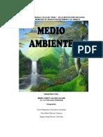 PROYECTO MEDIO AMBIENTE- Emanuel CP.docx