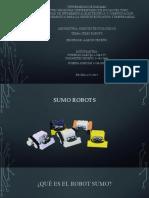 sumorob.pdf