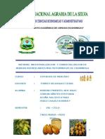 ESTUDIO DE MERCADO CARAMBOLA - VARELY.docx