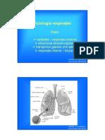 22256430-Fiziologia-respiratiei