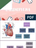 guia cardioplejia dani