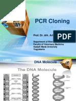 Aris-PCR Cloning