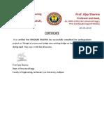 Bhaskar.pdf