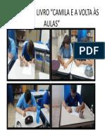 ATIVIDADE CAMILA VOLTA AS AULAS
