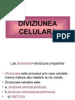 diviziunea directa si mitoza