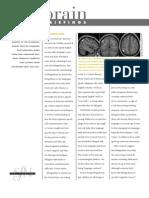 BB Bilingual Brain Web