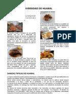 DIVERSIDAD HUARAL.docx
