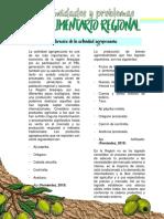 INFORME - AREQUIPA