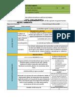 Formato 3 - Medio ambiente (1)