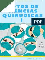 Andy Notas Cirugía I.pdf