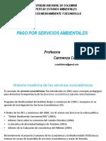 PSA 2020.pdf