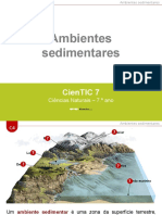 CienTic7- C4 Ambientes sedimentares