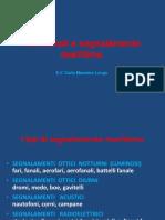 PPT - Fari fanali e segnalamento marittimo IALA rev.1.pdf