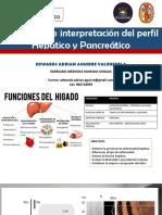 LABORATORIO HIGAOD Y PANCREAS