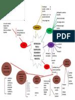 mapa mental proyectos - copia.docx