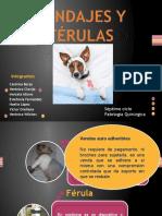 317105598-Vendajes-y-Ferulas