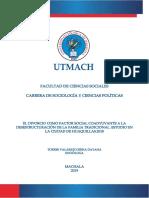 ECFCS-2019-SOC-DE00013