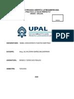 La propiedad intelectual_Mabel Fuentes.pdf