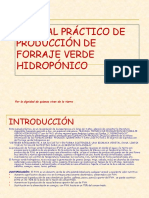 Fvh Manual Practico