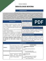 FICHA TECNICA BRU.pdf