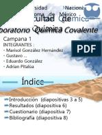 Presentacion Lab.pdf