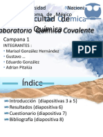 Presentacion Lab-convertido.pdf