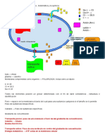 afinidad electrica .pdf