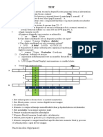 TEST_cls5-2.docx