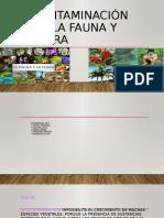 Contaminación de la fauna y flora.pptx