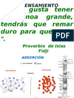 DIAPOSITIVA ABSORCION DE UN SOLO COMPONENTE SEMANA 2.pptx