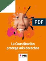 la_constitucion_protege