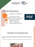 DIAPOSITIVAS RIESGO BIOLOGICO 2019