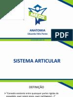 Sistema Articular - Slides