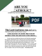 Are You a Catholic?