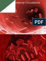 6 Sistema Circulatorio