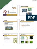 AULA 18 - Reino Protoctista.pdf