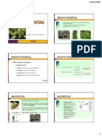 AULA 20 - Reino Plantae(1).pdf