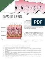 APUNTES CULTURA FISICA.pdf